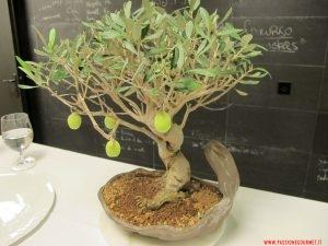 girona, el celler de can roca, olive verdi