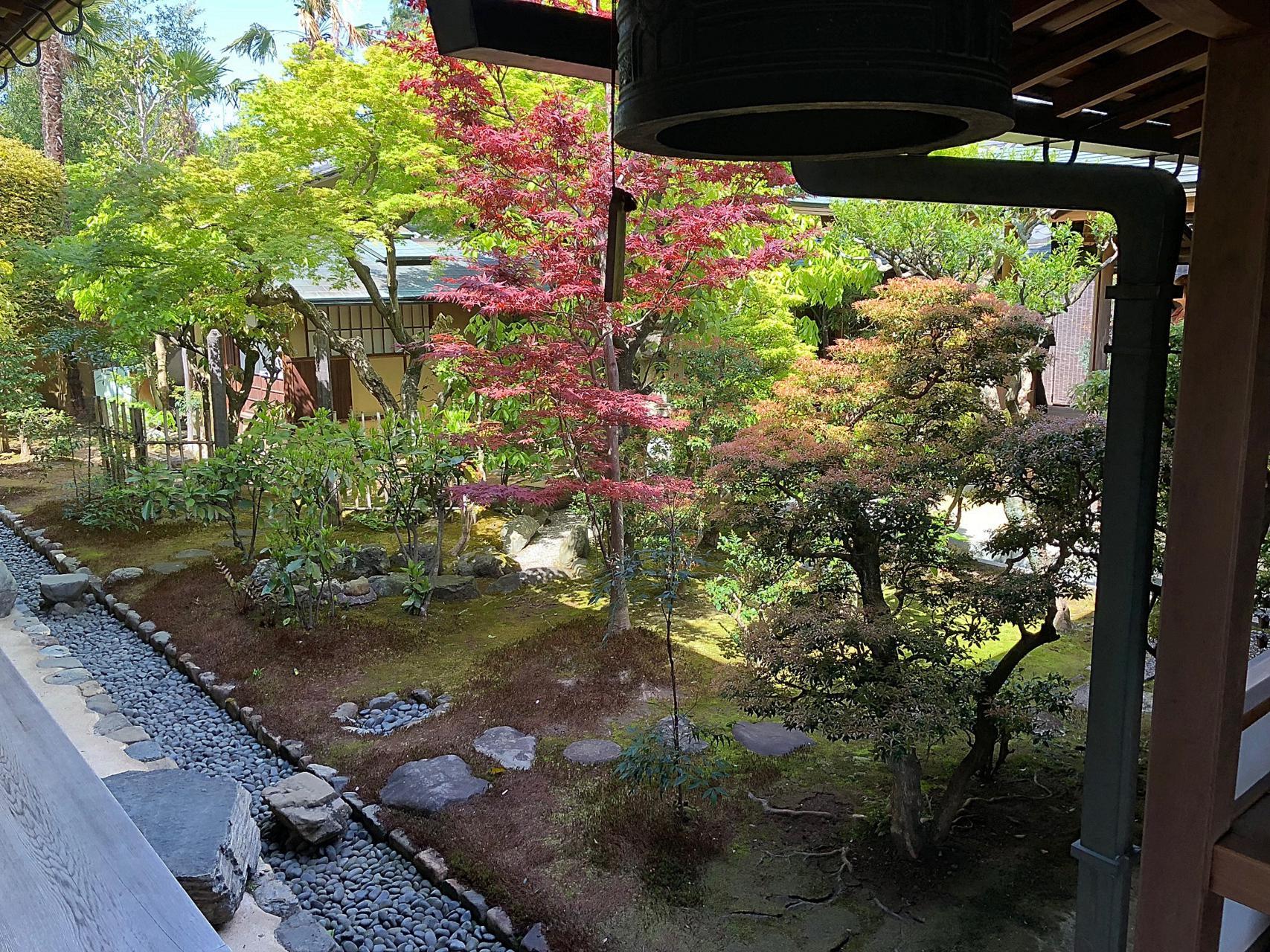 Tokyo, Passione Gourmet, Roberto Bentivegna