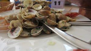 molluschi,Crudo, Stella adriatica, Marche