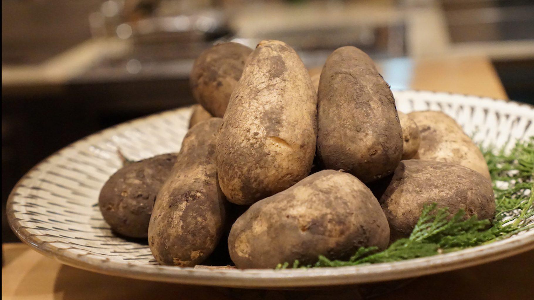 Sugalabo, la patata di Hokkaido