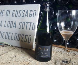 L'Atelier du Vin di Alessandra Divella, nuove perle in Franciacorta