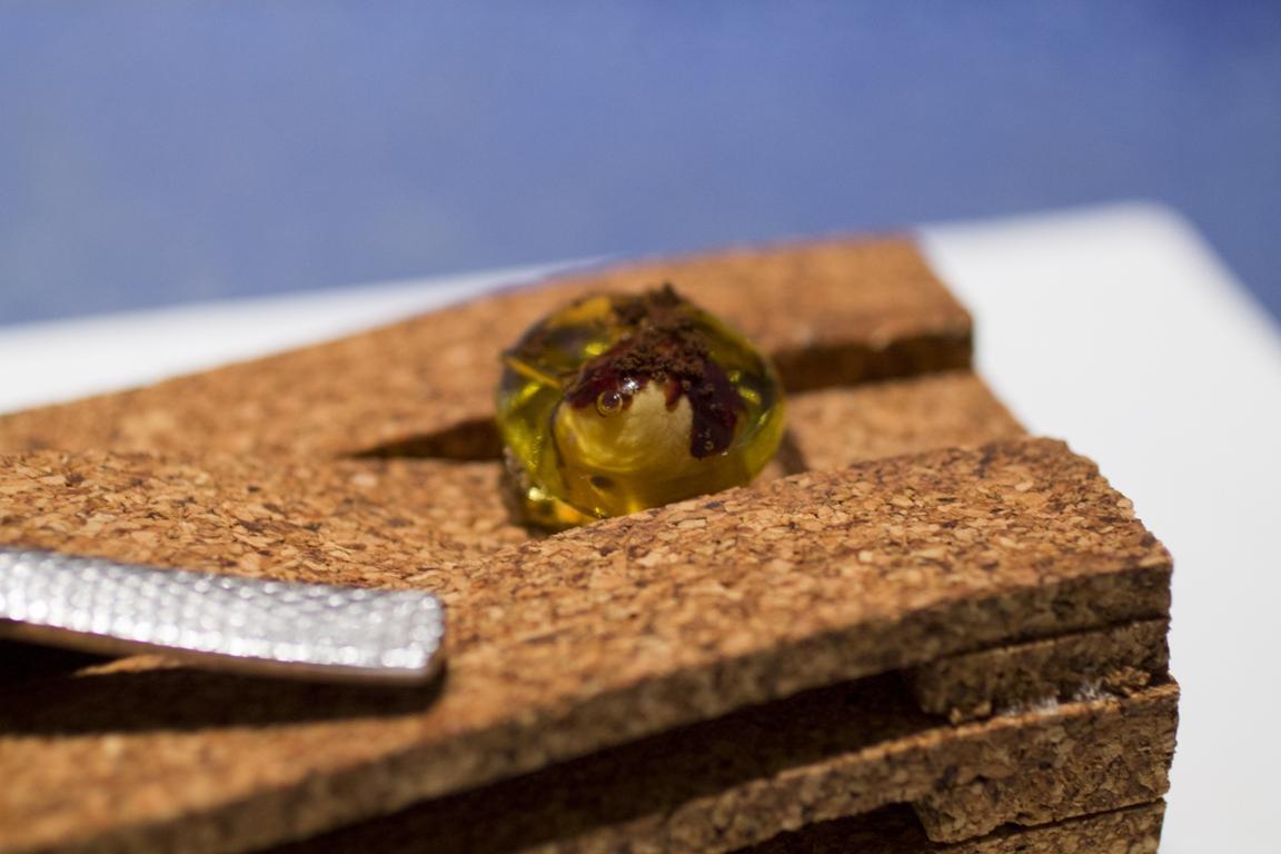 nocciola nella pietra di ambra Disfrutar, due stelle michelin, Barcellona, Spagna