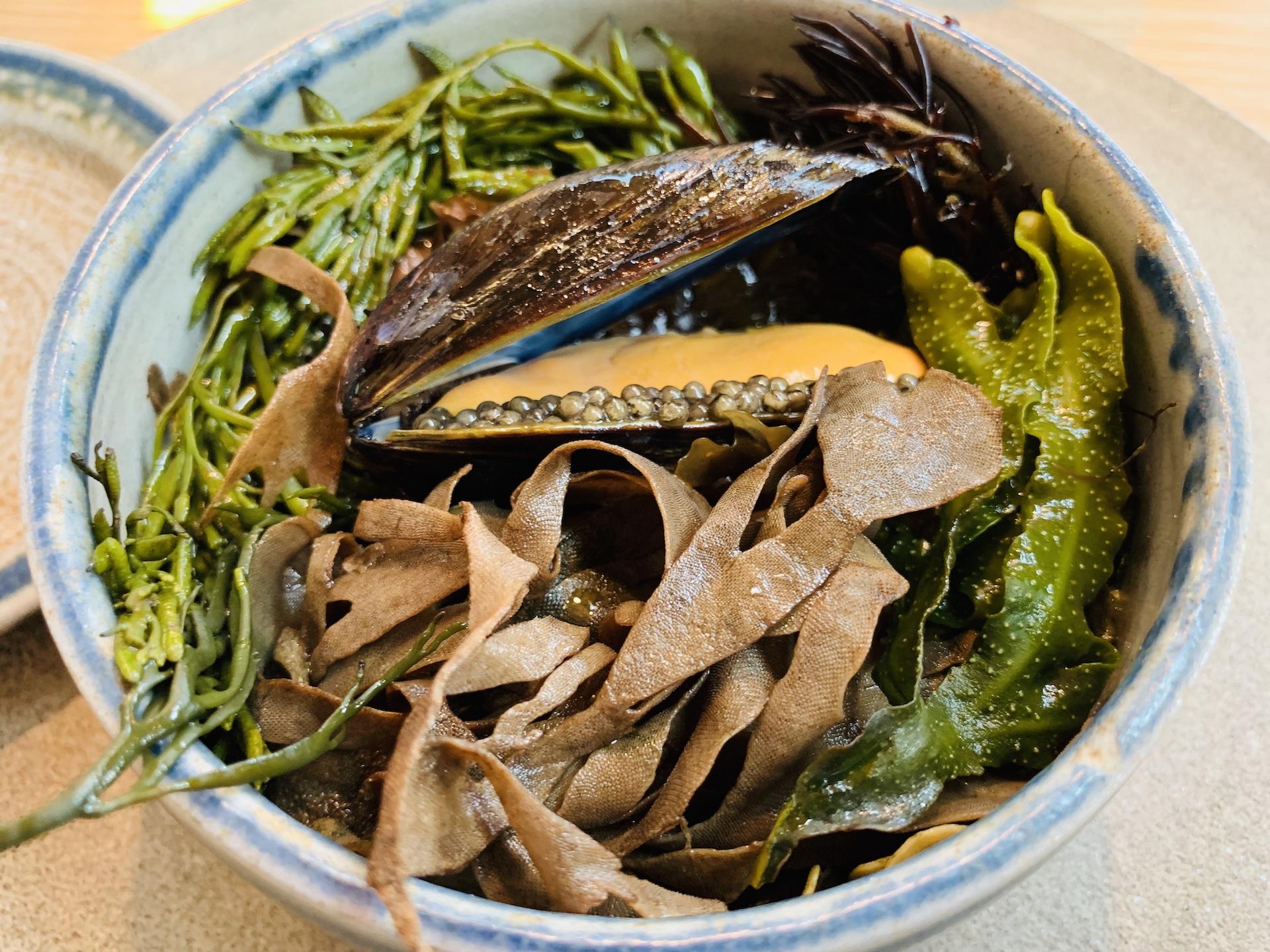 Cozza del Baltico con brodo di alghe, Noma, Copenhagen