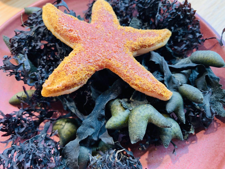 Stella marina di cremoso al cardamomo, liquirizia e zafferano,Noma, Copenhagen
