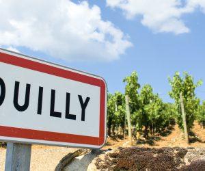 AOC Pouilly – Fuissé: riconosciuti 22 climats Premier Cru